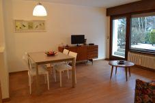 Appartamento a Pinzolo - 012 - Fantastico Bilocale con giardino privato, Pi