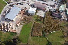 Unità industriali a Giustino - 005 Terreno commerciale, Giustino